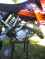 View Photos of Used 1999 KTM 125SX MOTOCROSS in Excellent Condition for sale photo