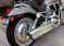 View Photos of Used 2003 HARLEY DAVIDSON VRSCA V-ROD STREET BIKE in As New Condition for sale photo
