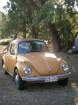 View Photos of Used 1974 VOLKSWAGEN SUPERBUG  for sale photo