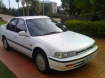 1993 HONDA ACCORD in QLD