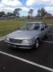1983 HOLDEN COMMODORE in VIC
